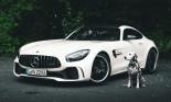 Mercedes-Benz là thương hiệu thành công nhất trên…Instagram