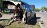 Audi Q7 gãy làm đôi sau tai nạn, tài xế vẫn bình yên và bỏ chạy khỏi hiện trường
