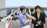 Khách Việt mông lung đợi ô tô giảm giá