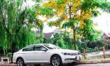 Bán được 500 xe trong nửa năm, Volkswagen Việt Nam tăng trưởng 200%