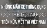 Những mẫu xe thông dụng có khả năng lội nước trên nửa mét tại Việt Nam