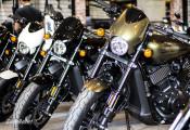 Harley–Davidson Street Rod 750 2018 trẻ trung đã về Việt Nam, giá trên 400 triệu đồng