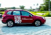 168 xe Subaru Forester được khuyến cáo triệu hồi tại thị trường Việt Nam