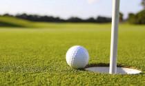Thú vị những ảnh động về môn thể thao golf