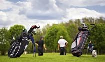 Hướng dẫn cách chọn túi golf mang lại tối đa lợi ích khi ra sân