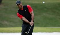 Lý do Tiger Woods không đeo găng tay khi chip bóng