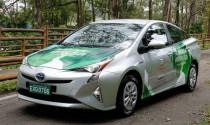 Toyota thử nghiệm xe nhiên liệu linh hoạt Prius Flex-Fuel