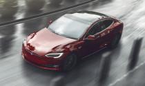Công nghệ thú vị của Tesla biến những chiếc xe thành 'thú cưng'