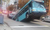 Xe bus \'bốc đầu\' bất đắc dĩ khi dừng chờ đèn đỏ