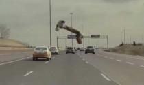 Hết hồn: Đang lái xe thì búa bay vào mặt