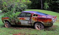 Xót xa trước những chiếc Ford Mustang bị lãng quên