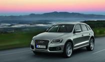 Audi Q5 2013 - chủ yếu cải tiến về động cơ