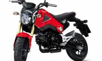 Honda MSX 125 2014 đến Mỹ