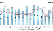 Nhập khẩu ô tô tăng mạnh trong tháng 5