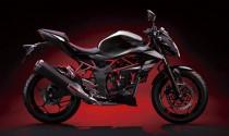 Kawasaki Z250SL 2014 ra mắt tại Malaysia, giá chỉ 105 triệu