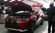 Lexus bắt đầu sản xuất NX
