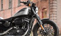 """Lộ diện """"chiến binh"""" Harley-Davidson 883 Iron 2015"""