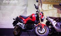 Lộ ngày lên kệ của xe côn Honda MSX 125 giá 60 triệu