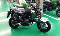 Mini côn tay Kawasaki Z125 thách thức Honda Grom