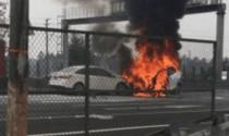Tesla Model X bốc cháy, khách hàng đòi bồi thường 1 triệu USD