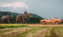 Nhập khẩu ô tô tháng 5: Xe Thái Lan vẫn dẫn đầu