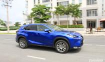 Ôtô giá 300 triệu, người Việt chịu 600 triệu tiền thuế