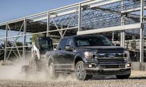 Ford F-150 và Expedition sẽ mạnh hơn, tiết kiệm hơn