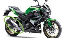 Kawasaki cảnh báo: độ pô dòng Z-series  sẽ gây hư hại động cơ