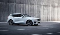 """Volvo XC60 lên ngôi  \""""Mẫu xe của năm 2018"""""""