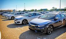 Thêm ô tô nhập thị trường xe vẫn tấp nập tăng giá