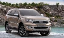 Ford cân nhắc có nên trình làng xe hiệu suất cao Everest Raptor