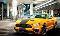 Roush trình làng bản độ mạnh 710 mã lực dành cho 'ngựa hoang' Mustang 2019