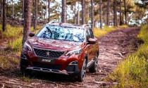 Peugeot áp dụng chính sách bảo hành 5 năm cho xe 5008, 3008 AllNew