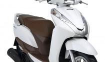 Hơn 37.000 xe Honda LEAD 125 sản xuất tại Việt Nam phải triệu hồi tại Nhật Bản