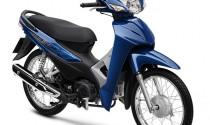 Honda Wave Alpha 110cc thêm màu xanh đậm, giá bán không đổi