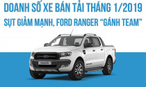 """Doanh số xe bán tải tháng 1/2019: Sụt giảm mạnh, Ford Ranger """"gánh team"""""""
