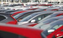 Ngành công nghiệp ô tô Nhật Bản vạ lây vì chiến tranh thương mại