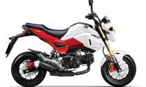 Honda MSX 125cc có phiên bản mới, giá 50 triệu đồng