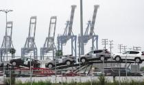 Sức mua sụt giảm, hàng ngàn ô tô nhập khẩu không có chỗ chứa