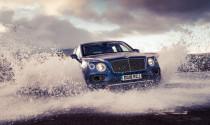 Hot hơn cả mong đợi, Bentley Bentayga gây choáng với số lượng xe đã ra lò