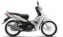 Honda Wave Alpha 110 ra phiên bản mới, giá không đổi