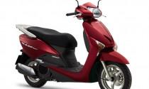 Tư vấn: Honda Lead 2012 nên thay nhớt như thế nào?