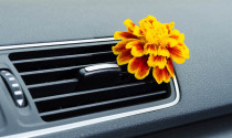 Loại bỏ mùi xe mới như thế nào?