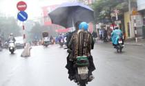 Sử dụng ô dù khi tham gia giao thông bị phạt bao nhiêu?