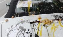Điểm mặt 10 \'thủ phạm\' gây hại cho lớp sơn xe ô tô