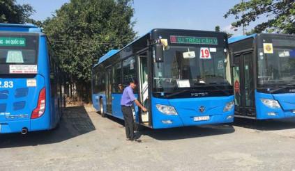 TP.HCM dừng toàn bộ hoạt động xe buýt trong hai tuần