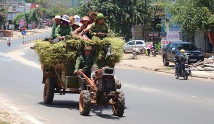 Điều khiển xe công nông cần giấy phép lái xe loại nào?